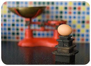 Egg rounded web