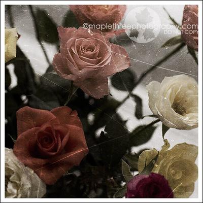 _mg_1506_vintage_texture_web